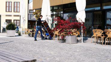 Liftkar SAL sube-escaleras – vino (en cajones)